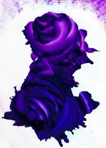 Rose Spectacular